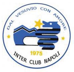 Logo-IC_Napoli-Storia
